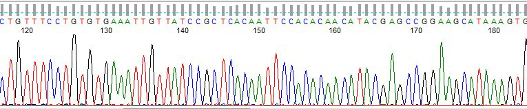 Result from pGEM-3Zf(+) internal control run with every batch of sequencing